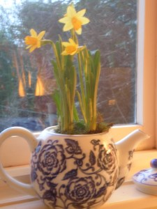 flowers in teapot