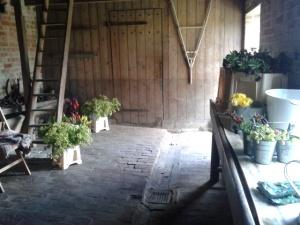 flower den
