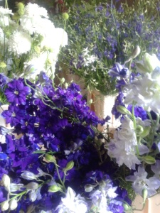 sea of larkspur and scabious