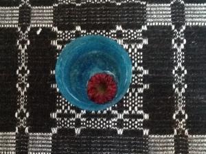 Alison's chrysanth