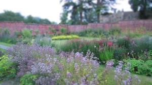 garden mid-July 017