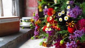 jubilant flowers